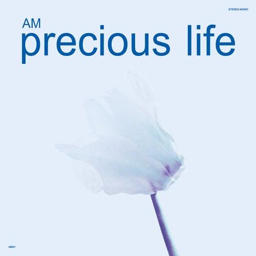 Precious Life by AM