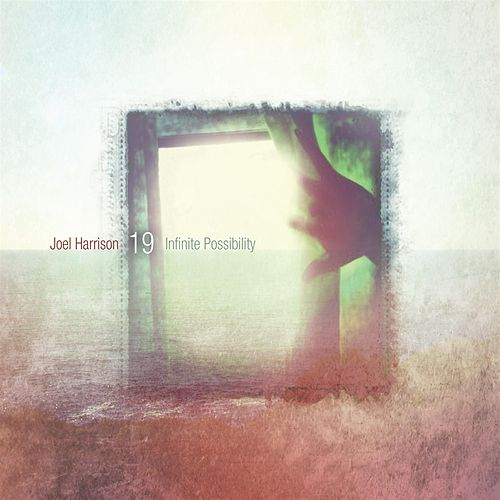 Infinite Possibility de Joel Harrison Octet