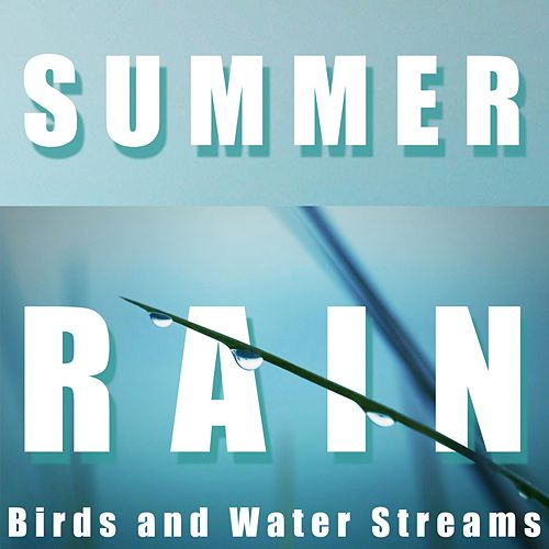 Summer Rain, Birds and Water Streams by Mindful Meditation