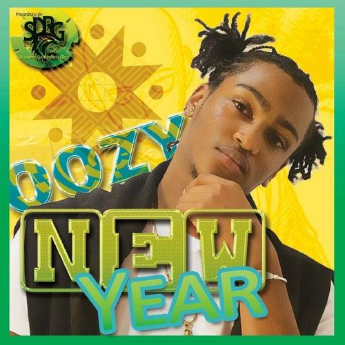 New Year von Oozy
