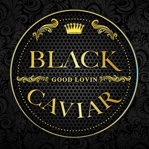 Good Lovin' by Black Caviar