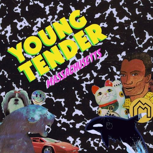 Massachusetts de Young Tender