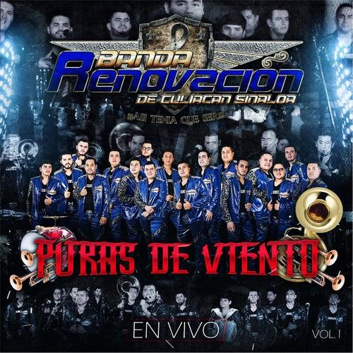 Puras de Viento, Vol. 1 by Banda Renovacion