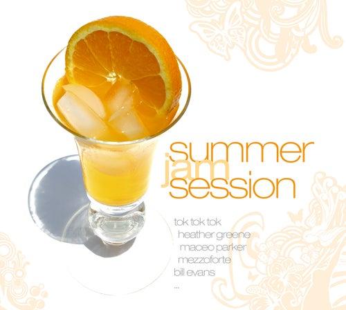 Summer Jam Session de Various Artists