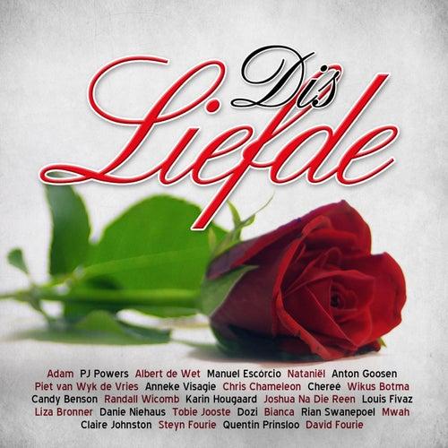 Dis Liefde de Various Artists
