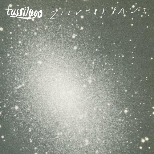 Zilverkraut von Tussilago
