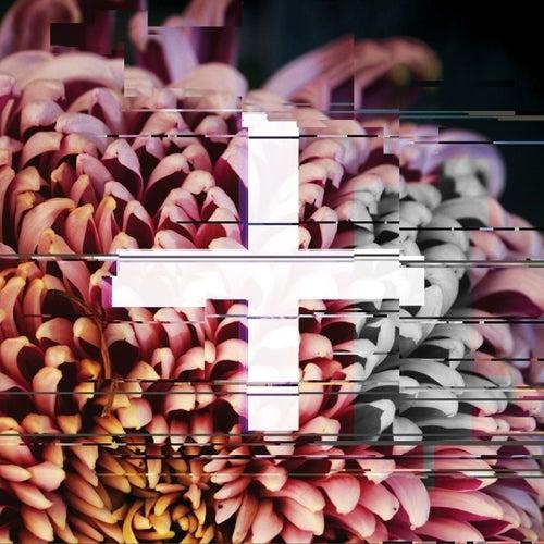 +FE Music: The Reworks de Various Artists