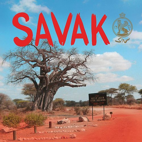 Best of Luck in Future Endeavors by Savak