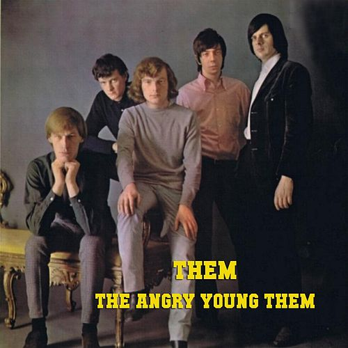 The Angry Young Them! von Them