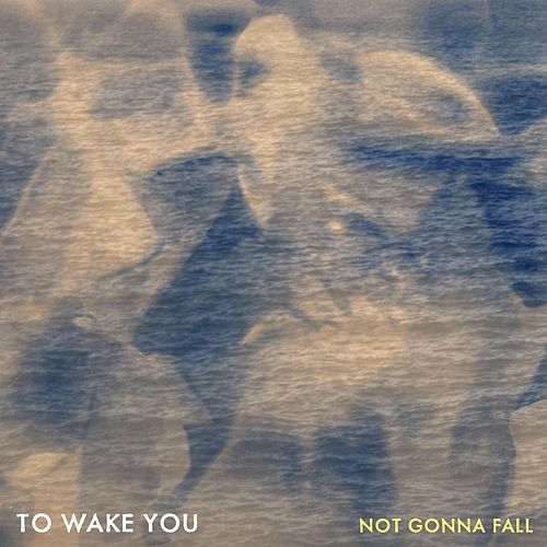 Not Gonna Fall by To Wake You