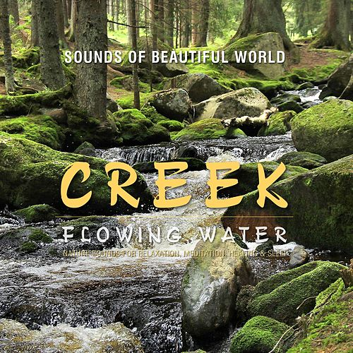 Flowing Water: Creek (Nature Sounds for Relaxation, Meditation, Healing & Sleep) by Sounds of Beautiful World