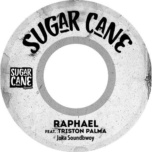 Joker Soundbwoy de Raphael