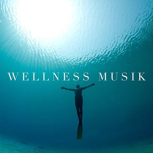 Wellness Musik - Entspannungsmusik Kostenlos by Various Artists