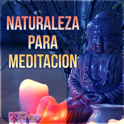 Naturaleza para Meditacion - el Yoga y la Meditación, Spa & Wellness, la Música de Fondo para el Masaje, el Sonido del Océano, la Lluvia con Música de Piano y Música de la Flauta, Música New Age para la Relajación de Meditación Música Ambiente