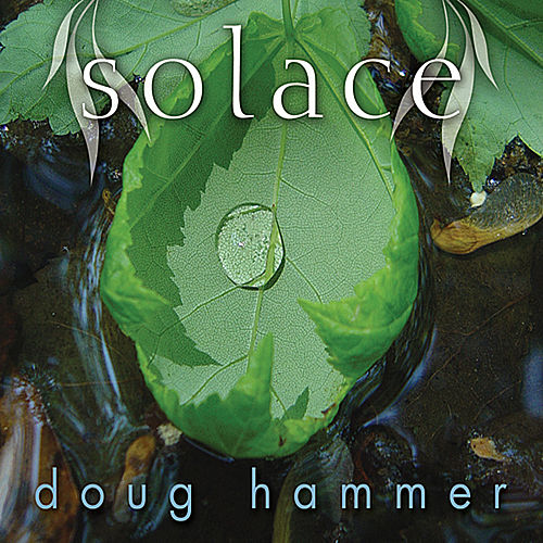 Solace de Doug Hammer