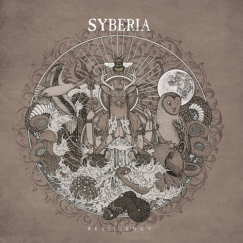 Resiliency by Syberia