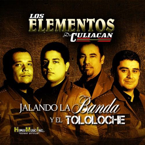 Jalando la Banda y el Tololoche by Los Elementos de Culiacan