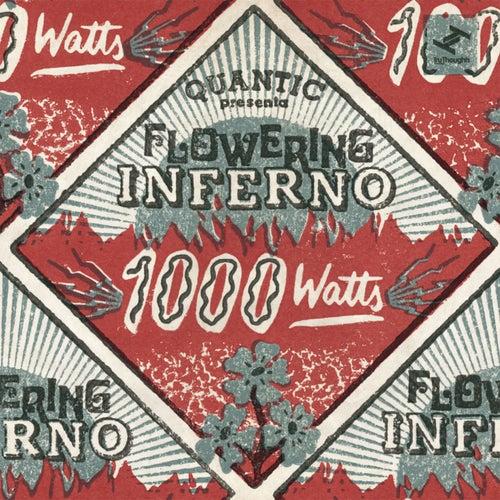 1000 Watts de Flowering Inferno Quantic