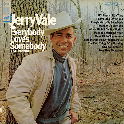 Sings Everybody Loves Somebody and Other Hits de Jerry Vale