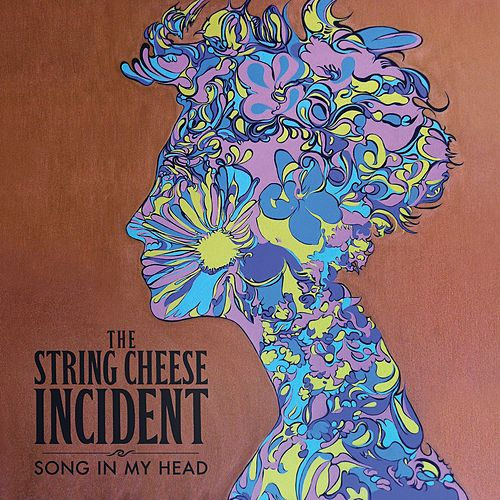 Song In My Head by The String Cheese Incident
