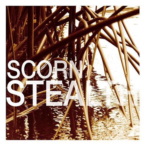 Stealth by Scorn