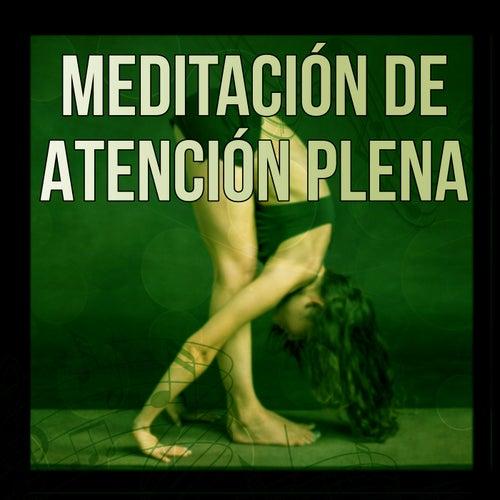 Meditación de Atención Plena – Meditación, El Sistema de Aprendizaje Alfa para Aumentar el Poder del Cerebro, Relajante Música Piano Para Escuchar Mientras Trabaja de Meditación Música Ambiente