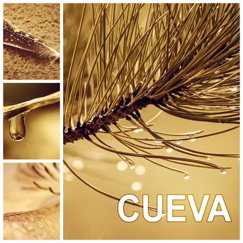 Cueva - Musica para Meditar e Musica de Relax, Sonidos de la Naturaleza para Meditacion y Reiki, Musica para Yoga, Musica para Dormir, Pensamiento Positivo, de Meditación Música Ambiente
