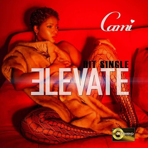 Elevate by Cami