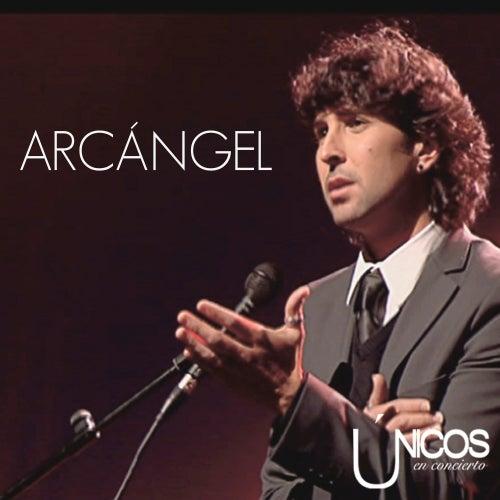 Únicos en Concierto. Arcángel by Arcángel