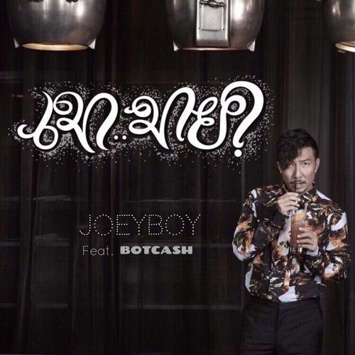 เมา..มาย? by Joey Boy