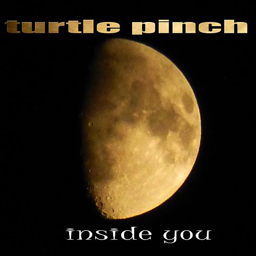 Inside You de Turtle Pinch