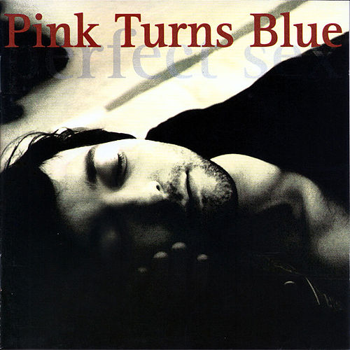 Perfect Sex by Pink Turns Blue