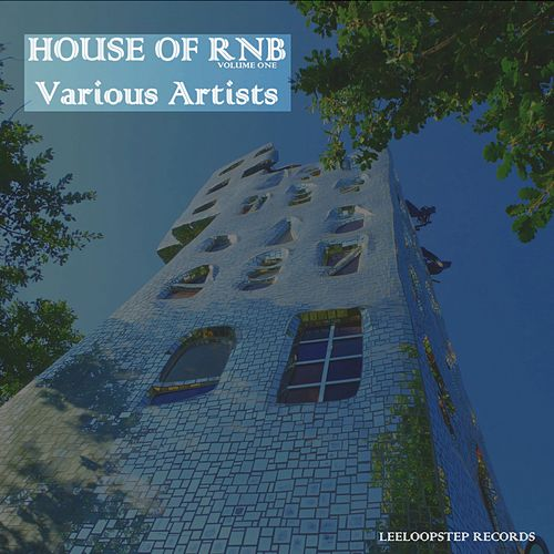House of R 'n' B, Vol. 1 von Various Artists