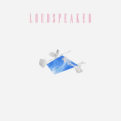 Loudspeaker van MUNA