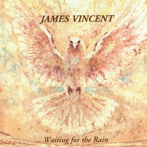 Waiting for the Rain de James Vincent