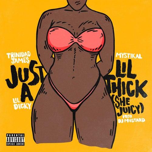 Just A Lil' Thick (She Juicy) van Trinidad James