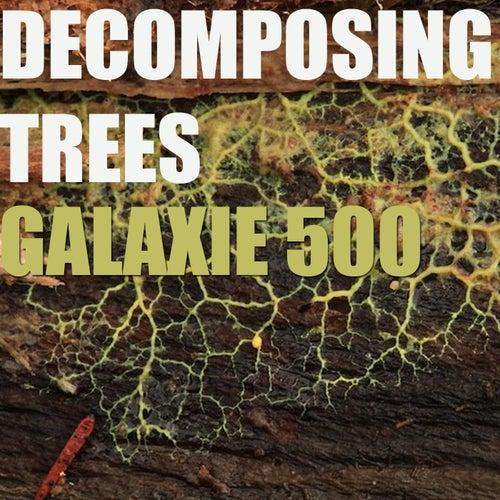 Decomposing Trees de Galaxie 500
