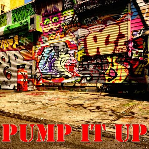 Pump It Up de Various Artists