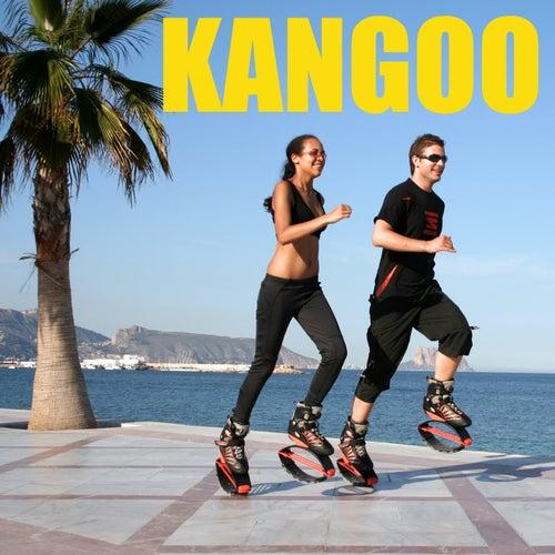 Kangoo von Various Artists