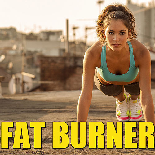 Fat Burner de Various Artists
