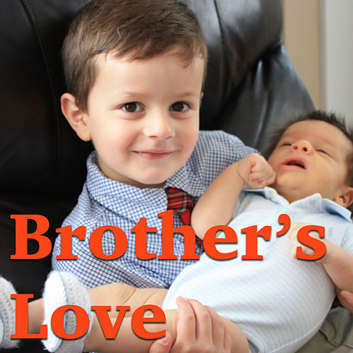 Brother's Love de Various Artists