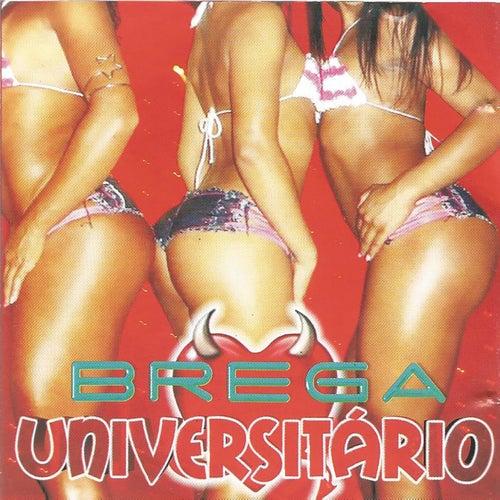 Brega Universitário de Various Artists