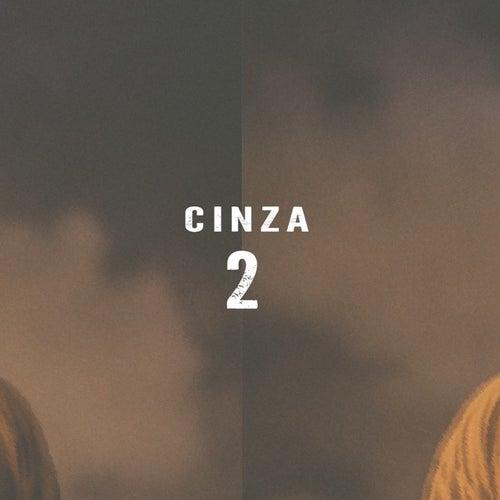 Cinza 2 de Diomedes Chinaski