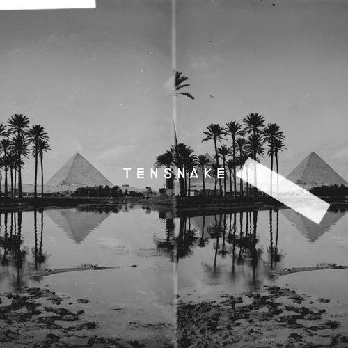 Desire EP de Tensnake