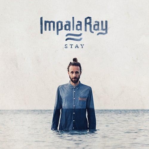 Stay by Impala Ray