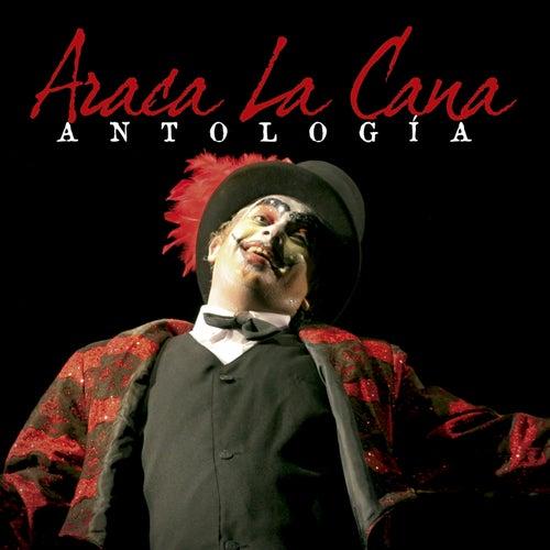 Antologia de Araca La Cana