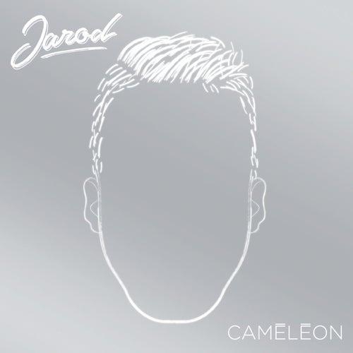 Caméléon de Jarod