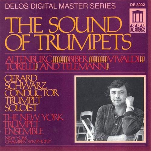 Trumpet Music - ALTENBURG, J. / VIVALDI, A. / BIBER, H. / TORELLI, G. / TELEMANN, G. (The Sound of Trumpets) (Schwarz) von Various Artists