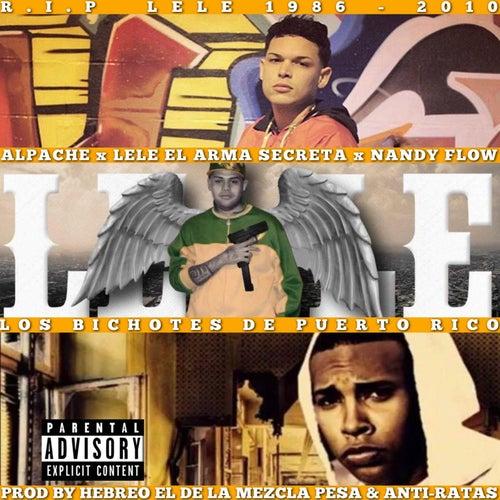 Los Bichotes de Puerto Rico (feat. Lele El Arma Secreta & Nandy Flow) de Alpache