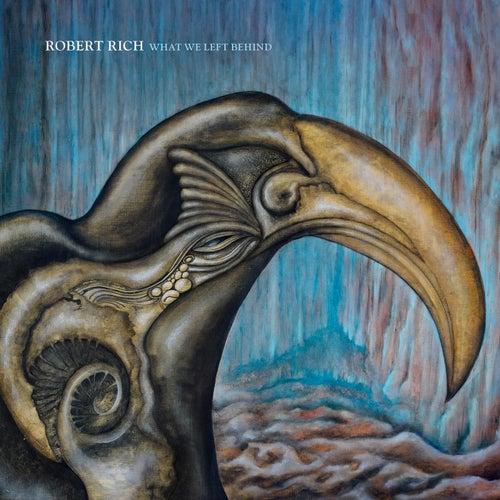 What We Left Behind de Robert Rich
